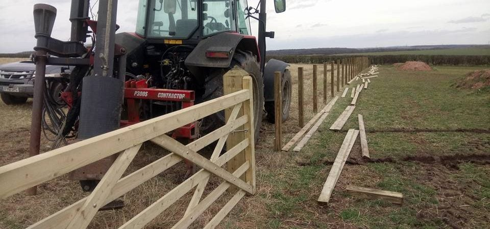 Agricultural fencing and gates