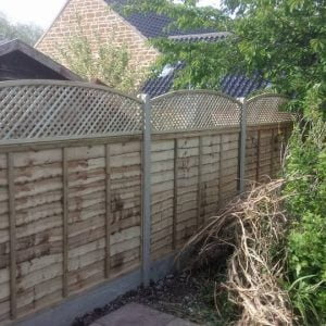 Fence panel with trellis