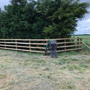wooden fencing in field